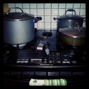 130316 stove